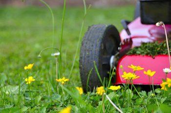 Lawn Maintenance Vancouver WA