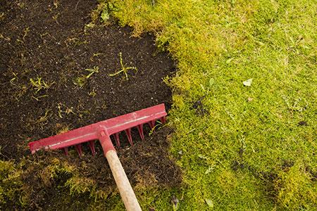 Yard Maintenance Vancouver WA
