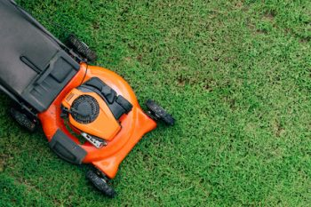 when can i mow my lawn after sod installation vancouver wa