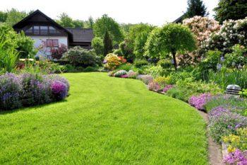 Lawn Aeration Vancouver Wa