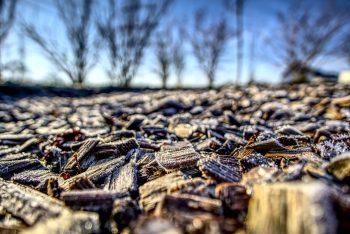 Yard Mulch Frost